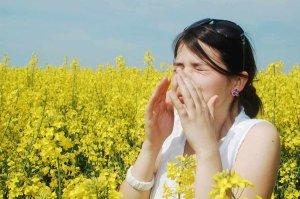 mayo allergies tw 25416