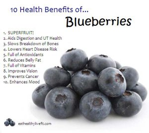10 bens blueberries tw 26516