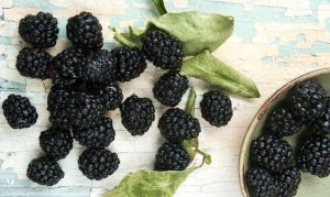 5 foods for depress tw mar 16