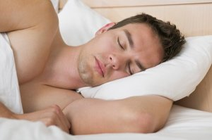 alpha males sleep tw 16516