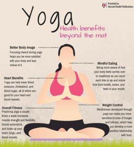 harv yoga tw 19516