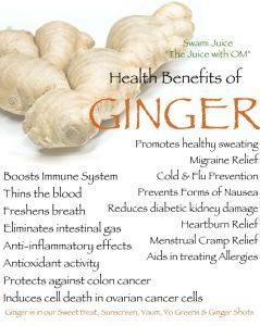 bens of ginger tw 3616