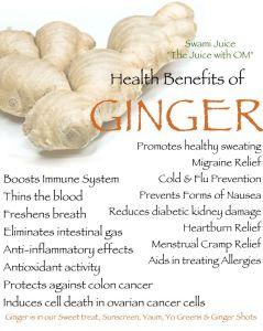 bens of ginger tw 3616
