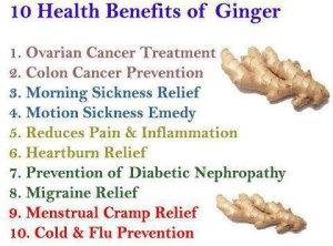 health bens of ginger tw 24616
