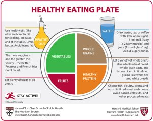 health eat plate tw 27616