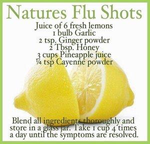 natures flu shots tw 22616