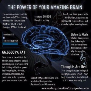 the power of brain tw 26616