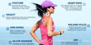 walking calories tw 23616