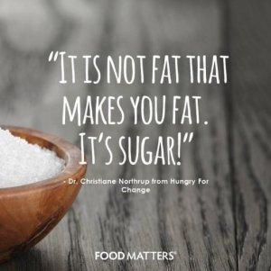 not fat, sugar tw 4716