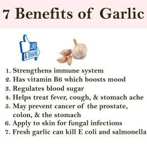 7 bens of garlic tw 5816