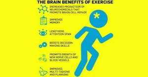 brain bens ex tw 12816