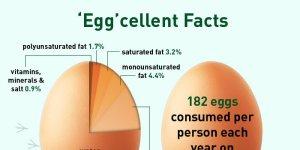 eggcellent tw 17816