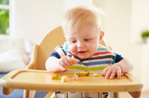 harv baby food tw 21816