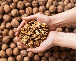 walnuts tw 16816