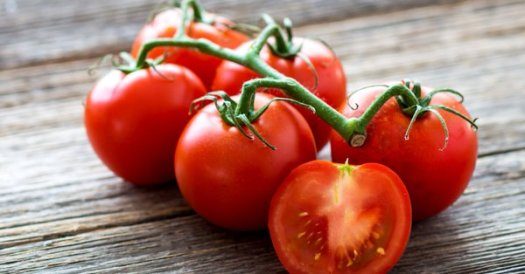 cleve tomatoes
