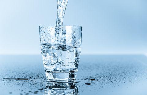 harvard water
