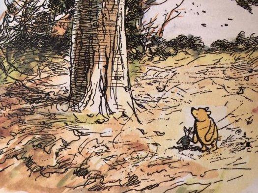 winnie the pooh blusterous